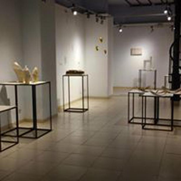 Exposicions_ 2017_07 Premis biennal Esplugues