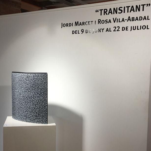 Expo Transitant 20