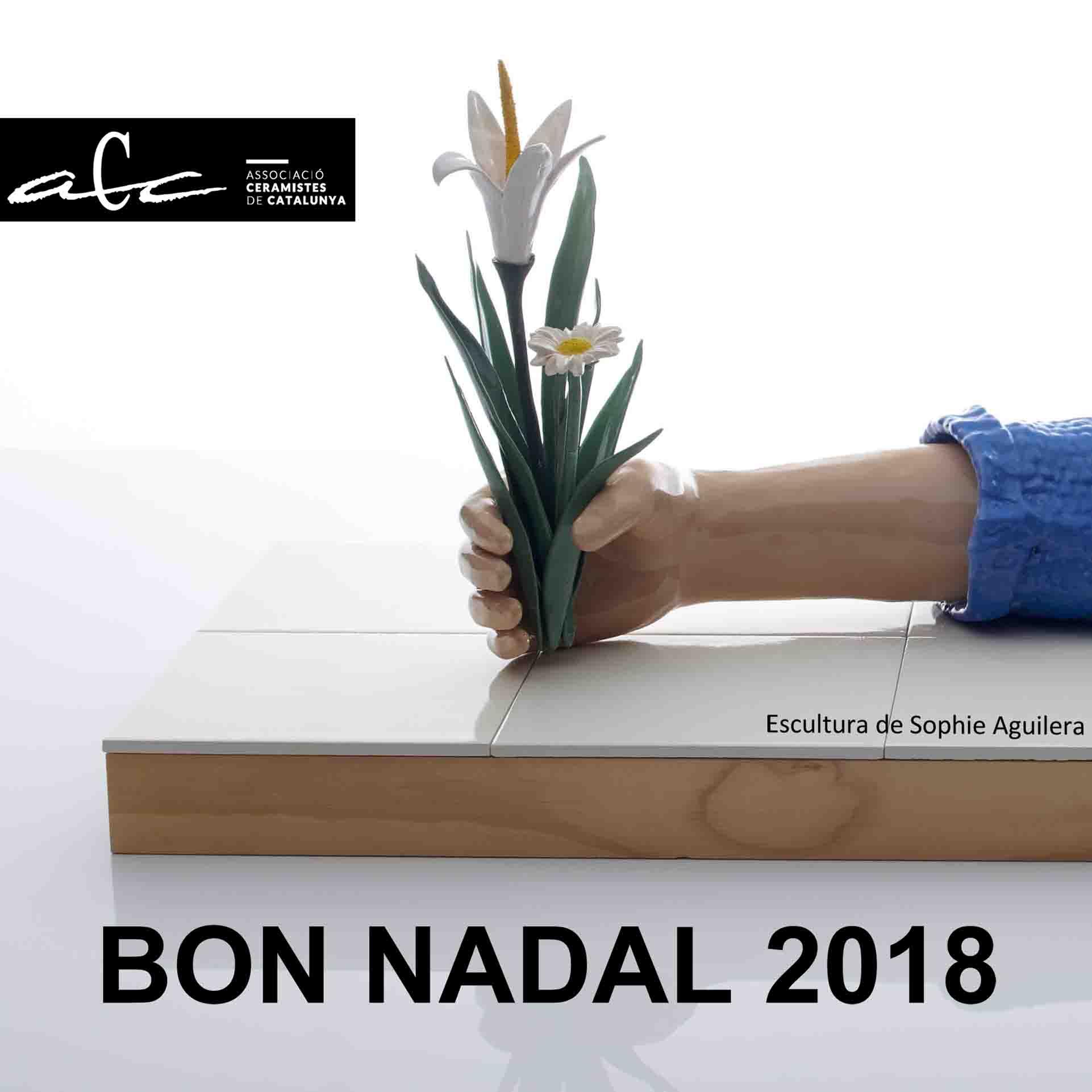 Felicitacio Nadal 2018 ACC Mailing