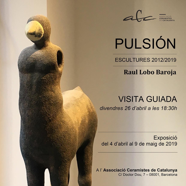 PULSIÓN. Visita Guiada A L'ACC