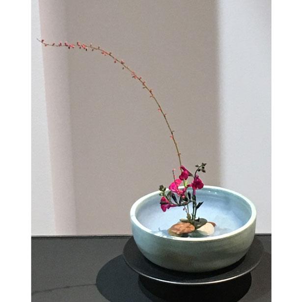 Expo Ikebana 15