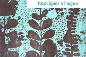 TRANSFERÈNCIA AMB FOTOCÒPIES A L'AIGUA