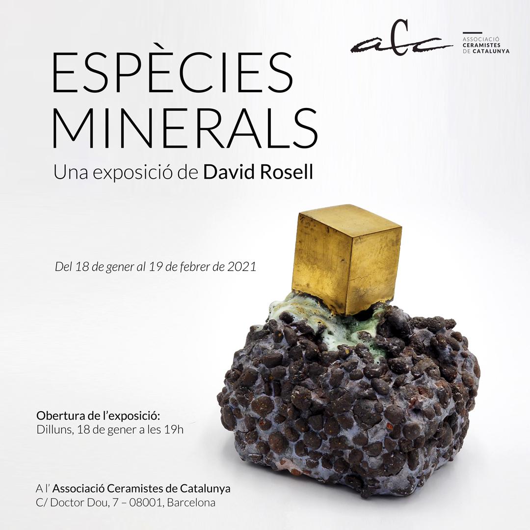 Espècies Minerals A L'ACC